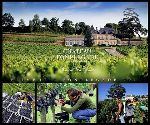 guide des vignobles bordelais, saint emilion