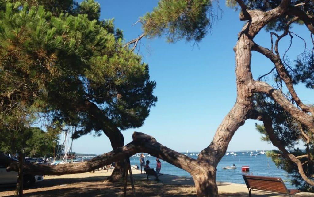 plage-villa-algerienne