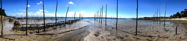 visite bassin arcachon, travailler au bassin arcachon, saisonnier à arcachon
