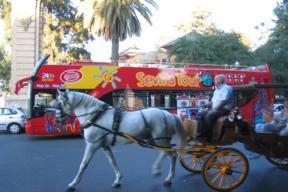 seville-bus-visite