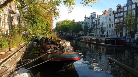 visite-amsterdam-velo