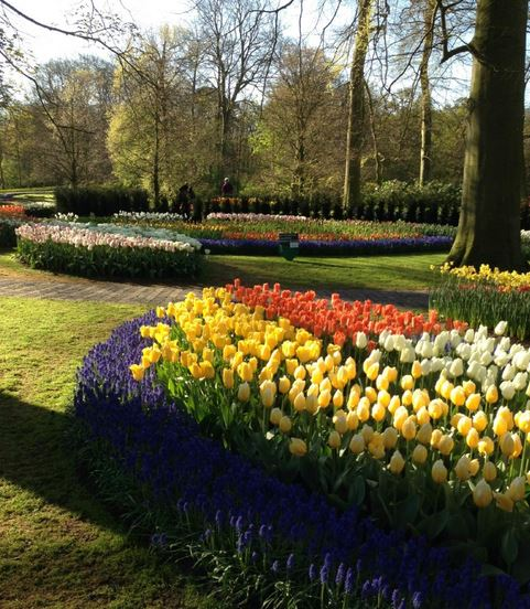 parc-Keukenhof-proche-amsterdam