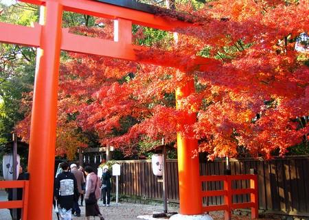 Shimogamo-jinja-kyoto