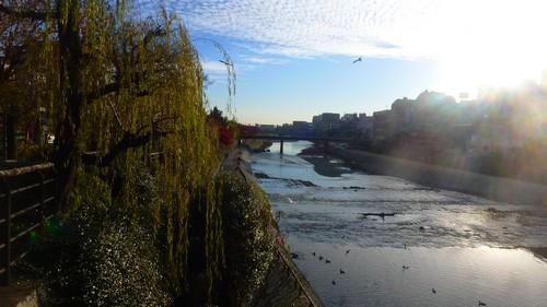 riviere-kyoto-visite