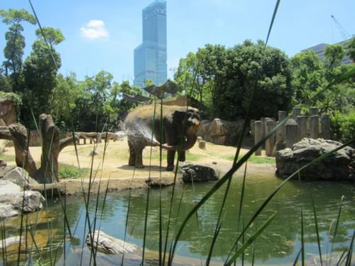 visiter-zoo-Tennoji-osaka