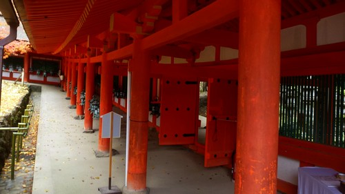 wakamiya-shrine-nara