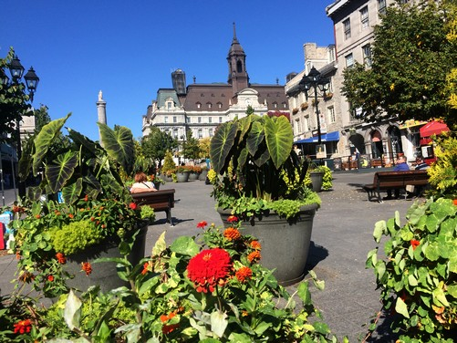 visiter-place-jacques-cartier-montreal