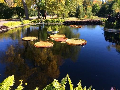 parc-botanique-montreal-a-cote-stade-olympique