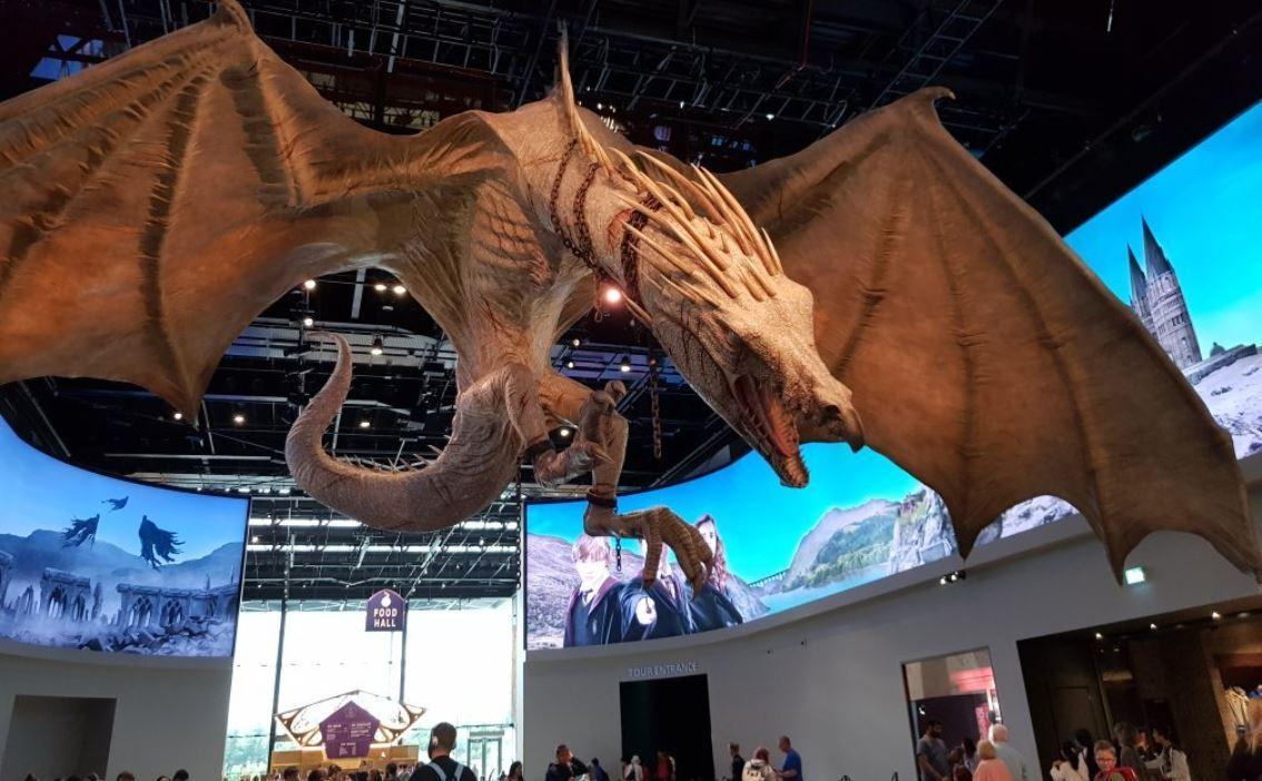 dragon-harry-potter-sutdio