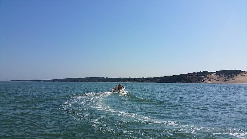 balade-bateau-arcachon-bordeauxwildlife