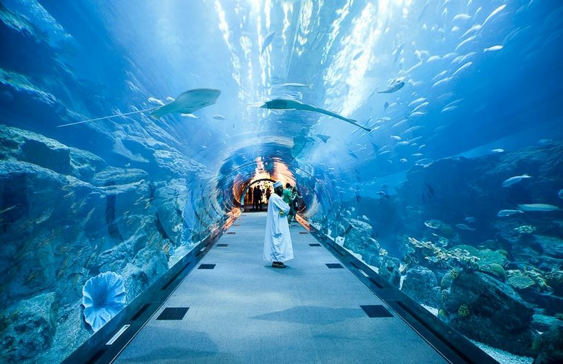 aquarium-dubai-mall-dubai