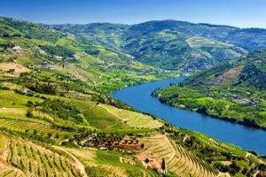 Visiter la Vallée du Douro