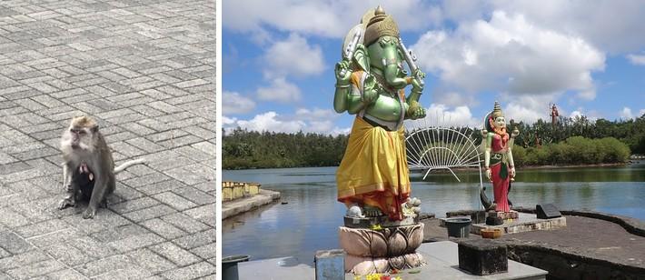 temple-Grand-Bassin-ile-Maurice