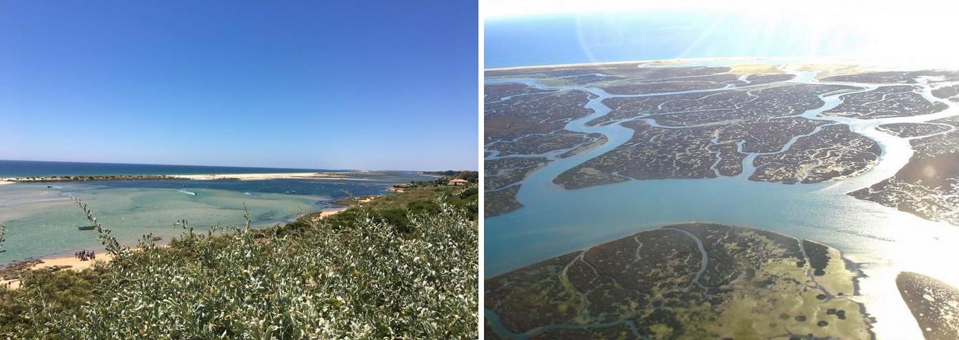 decouvrir-reserve-naturelle-ria-formosa-faro