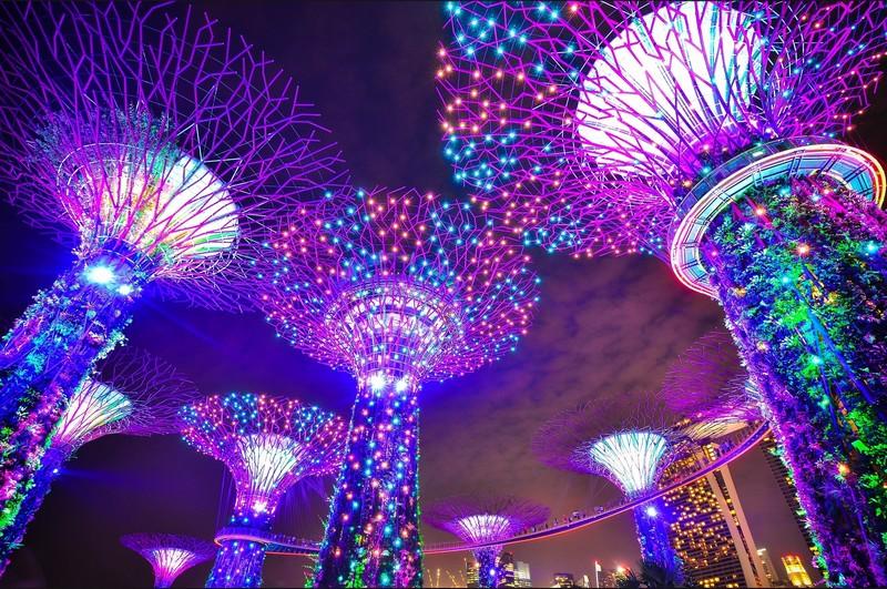 que-voir-singapour-SupertreeGrove