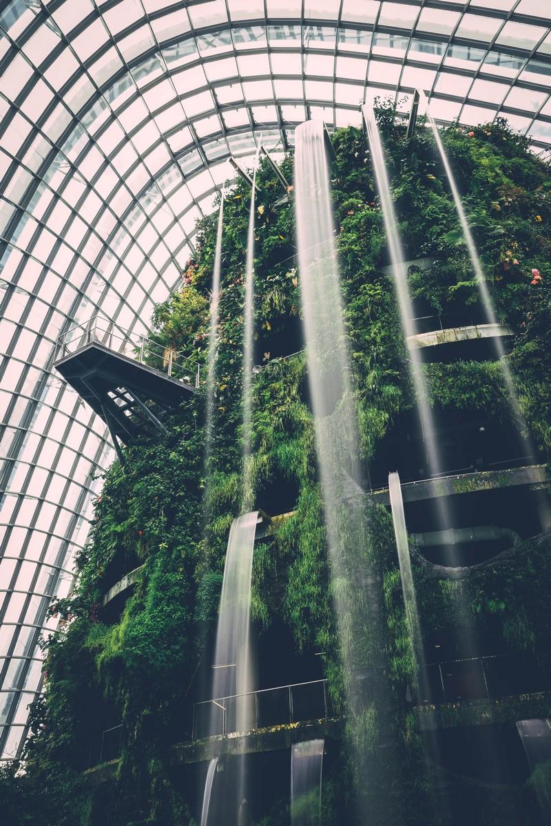 singapour-FlowerDome