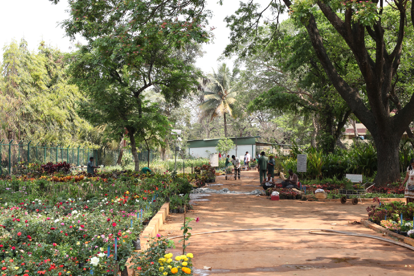 jardin-botanique-quartier-mg-road-bangalore
