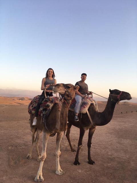 ou-faire-dromadaire-depuis-marrakech