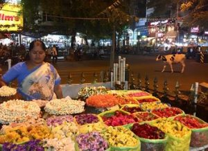 Visiter Bangalore et où dormir à Bangalore
