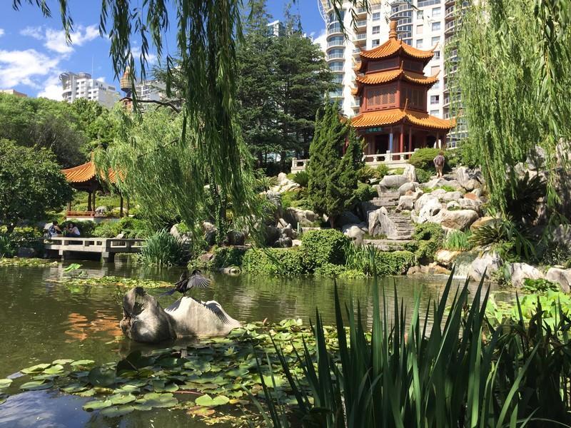 voir-jardin-chinois-sydney