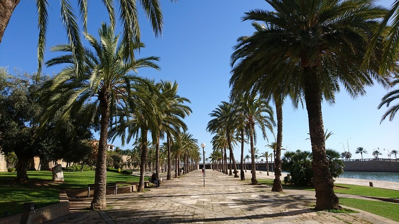 Parc-del-Mar-palma-majorque-visite-guidee-francais