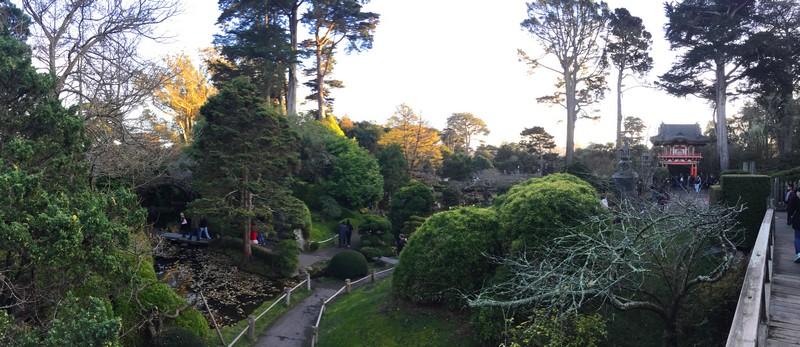 visite-japanese-tea-garden-san-francisco