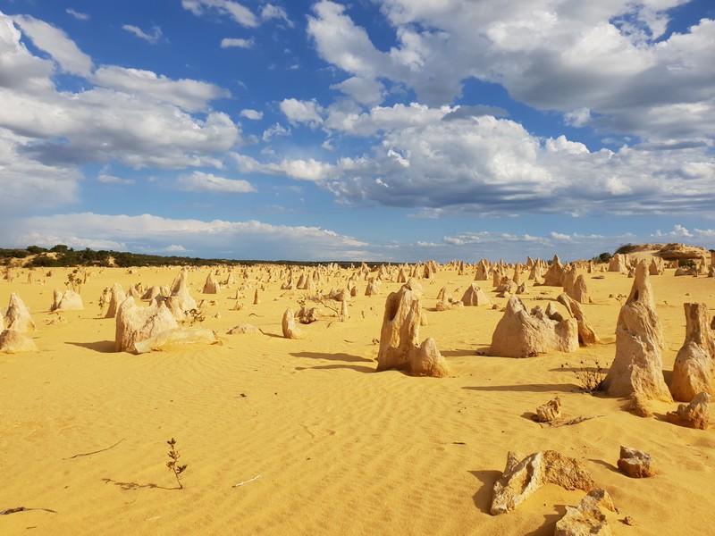 visiter-pinnacles-australie-ouest