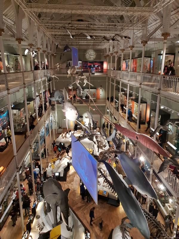 visiter-Musee-National-Ecosse-edimbourg