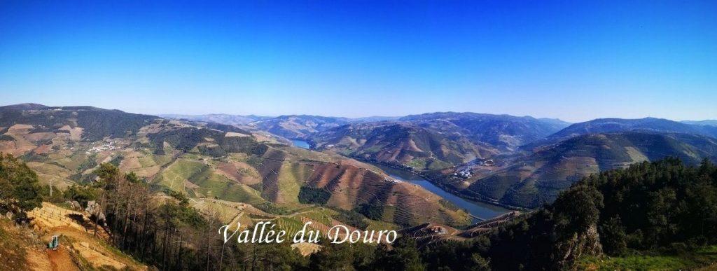 Vallee-douro-voyage-porto
