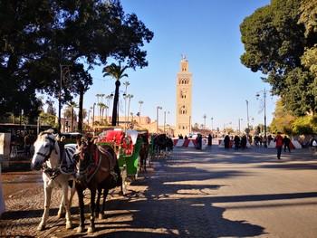 transfert-aeroport-marrakech-hotel
