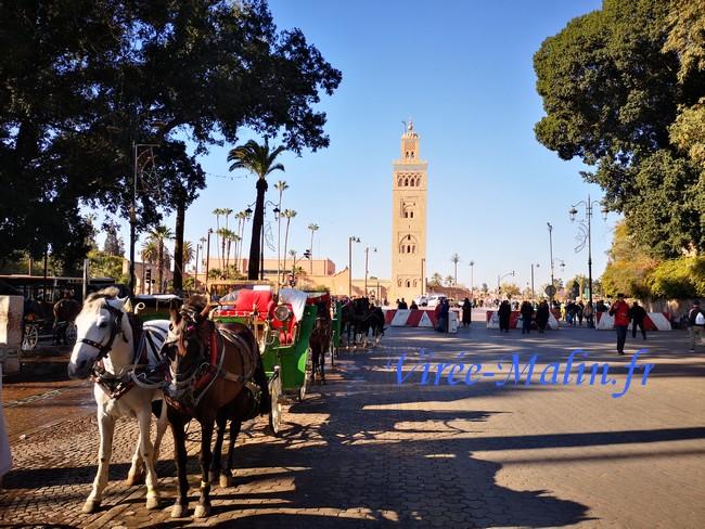 transport-marrakech-caleche
