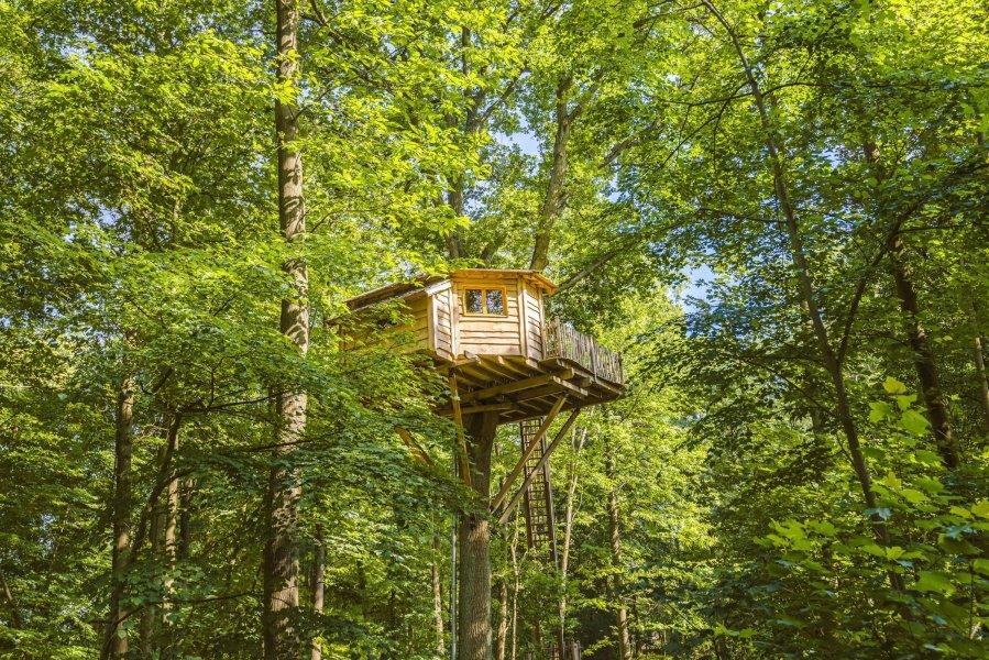 cabane-dans-les-bois-luxueuse-Picardie