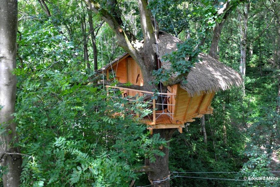 logement-bois-arbres-haute-normandie