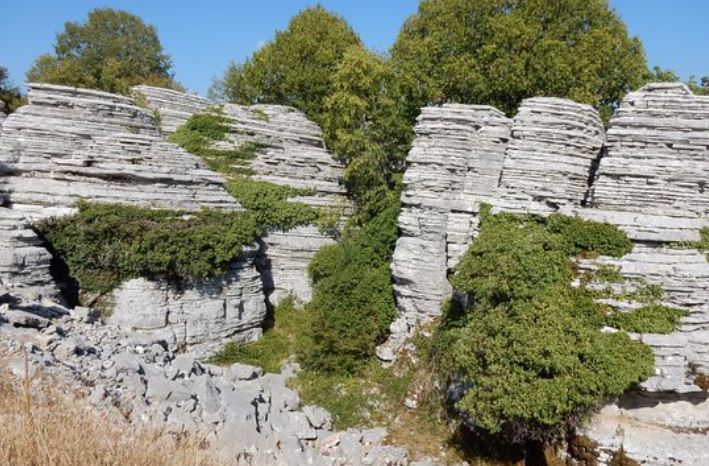 Stone-forest-gorges-vikos