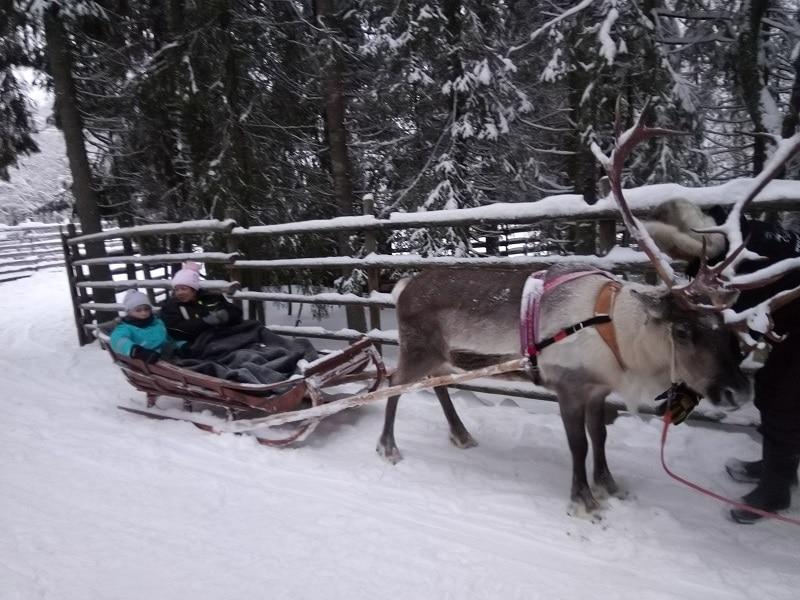 activites-rennes-avec-enfants-rovaniemi