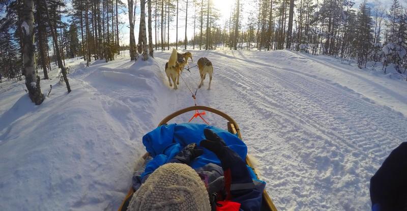 meilleurs-activites-Rovaniemi