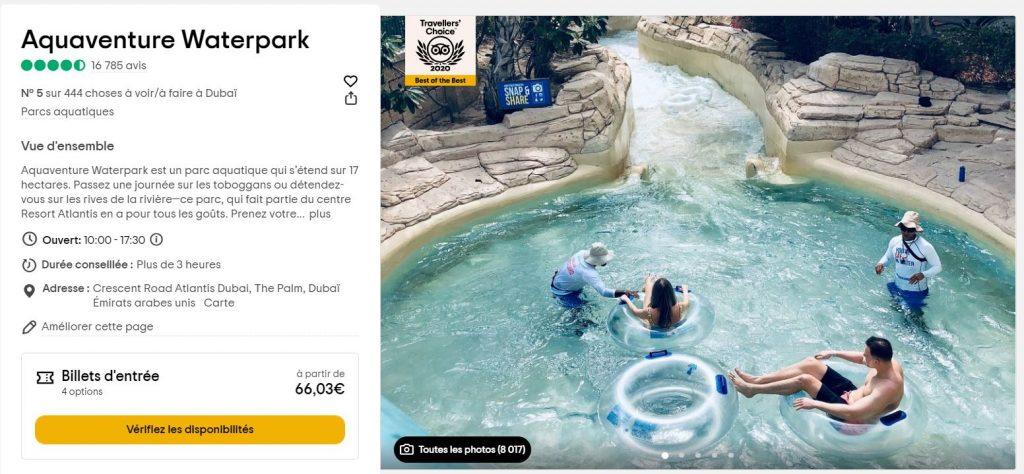 aquaventure-waterpark-activite-dubai