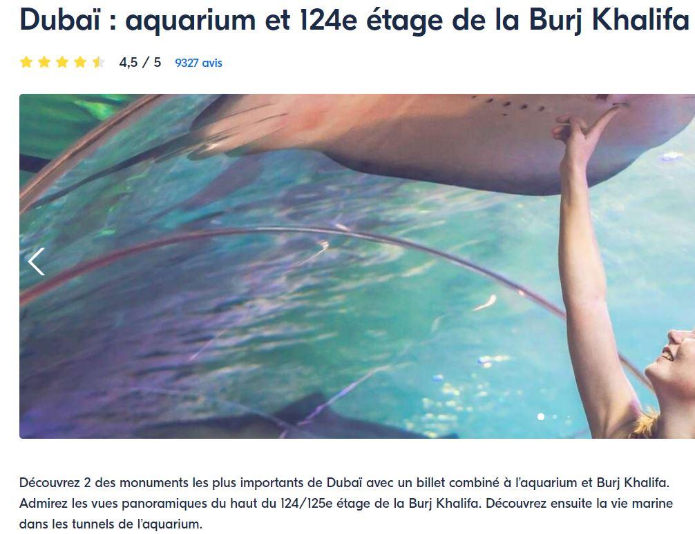 combien-de-jour-rester-dubai-pour-faire-incontournable-aquarium-nurj-khalifa