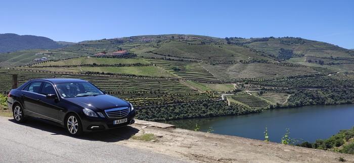 activite-degustation-meilleurs-vins-vallee-douro