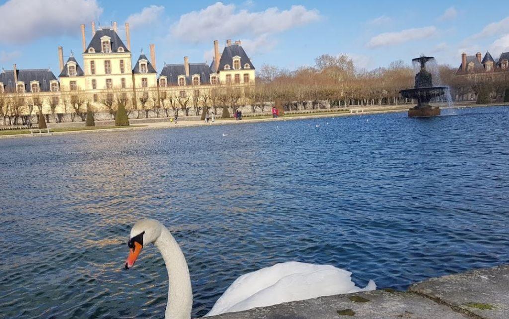 chateau-fontainebleau-foret-randonnee