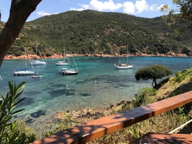 excursion-mer-calvi-eaux-transparentes