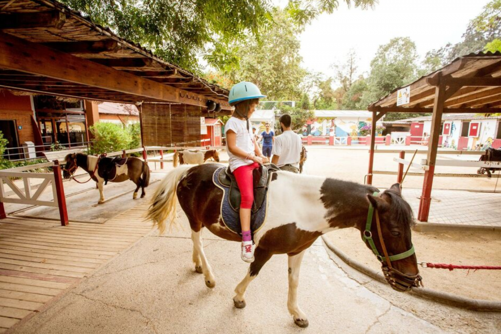 activite-barcelone-zoo-balade-poney